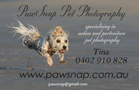 PawSnap Pet Photography